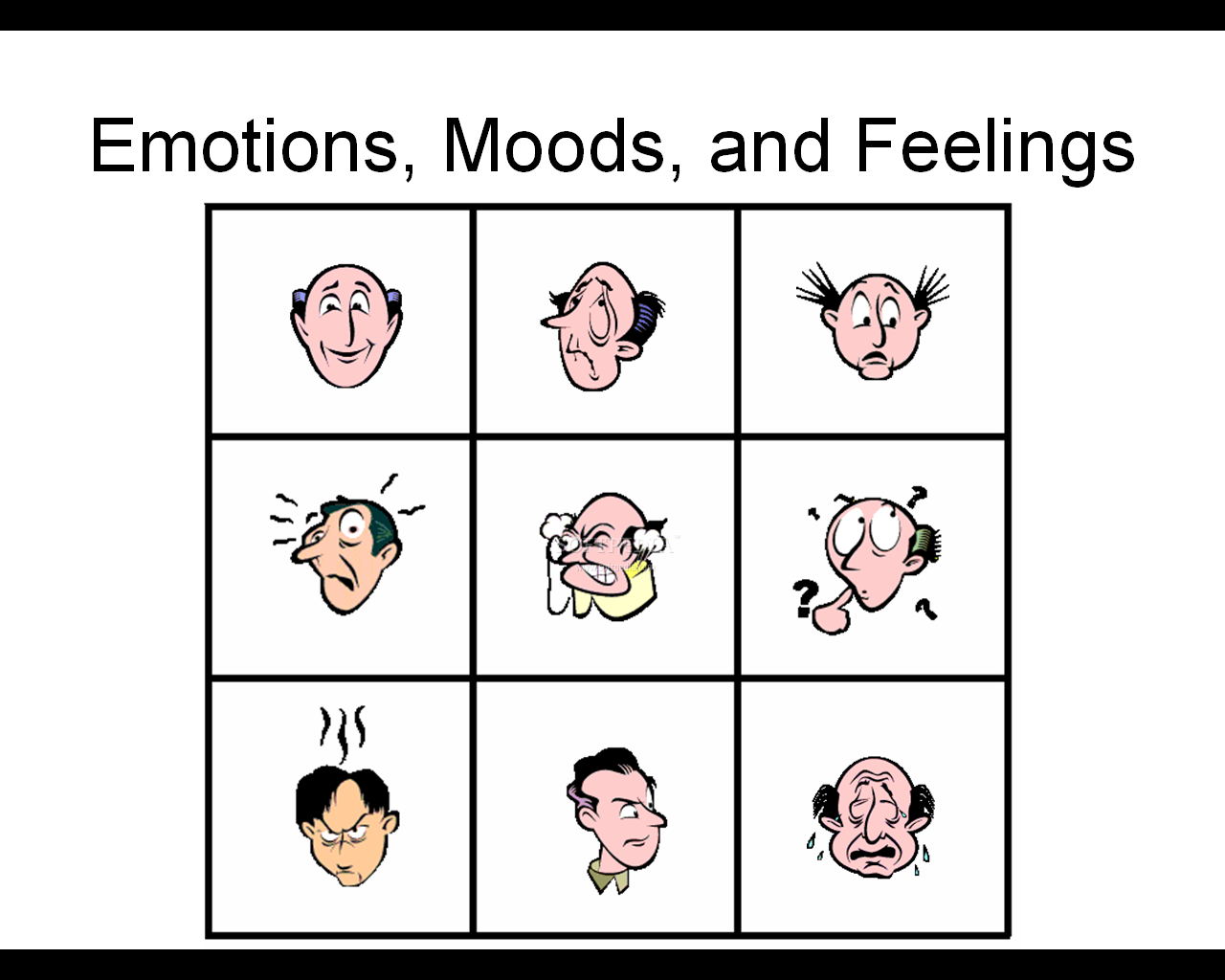 Emotions moods and feelings 1 1